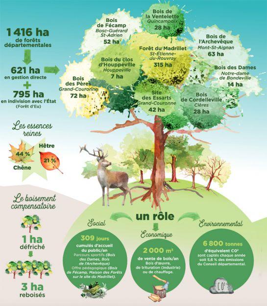 Infographie forêts départementales