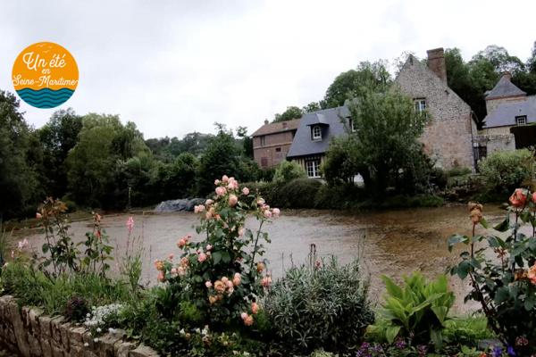 Lundi en images : Le long du plus petit fleuve de France, la Veules