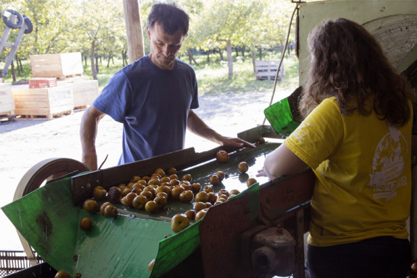 Mon Panier 76: la ferme coopérative Marcotte