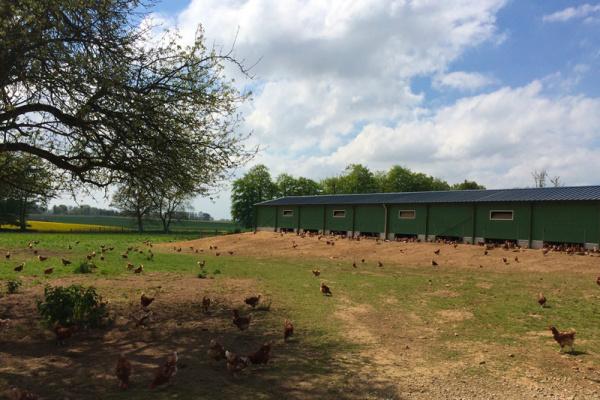 Mon Panier 76: la ferme de la Bruyère