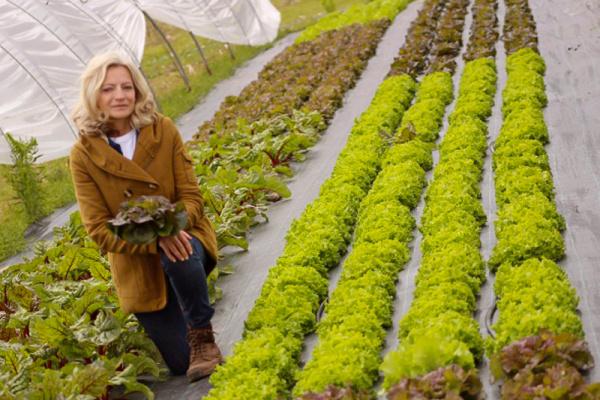 Mon Panier 76: Les Jardins de Simone